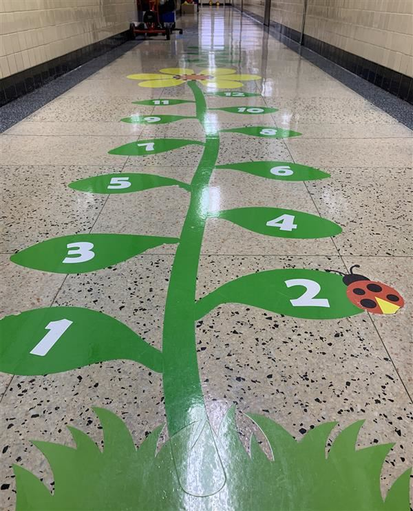 Sensory Path at Maywood Campus